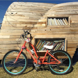 """""""Little Free Libraries"""" (@colemicks)"""